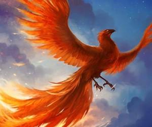Cloud Phoenix