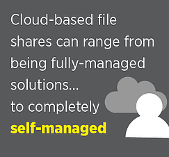 cloud-based file share services nfs cifs cloud data management software google cloud storage open source