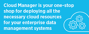 Cloud Manager for Data Management