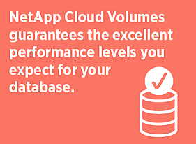 Database Performance Levels with Cloud Volumes