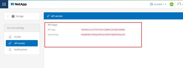 Select the API Access option