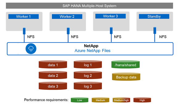 Multi-host SAP deployments using ANF  As
