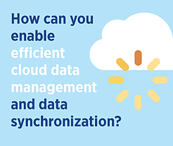 Efficient Cloud Data Management