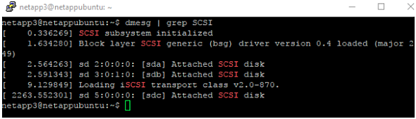 Use the dmesg | grep SCSI command