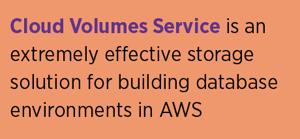 CVS in AWS Storage
