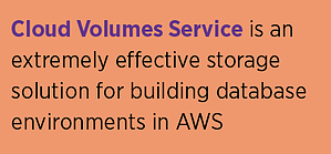 CVS in AWS Storage