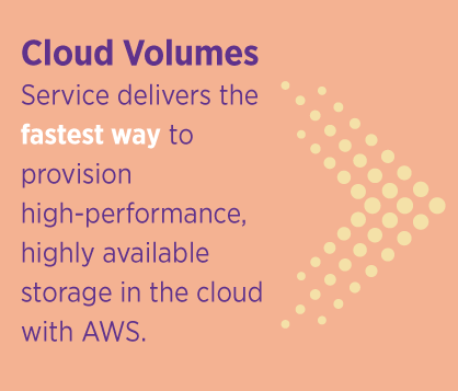 Cloud Volumes Service Delivers Fast