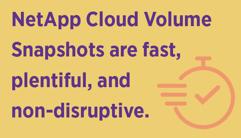 NetApp Cloud Volume Snapshots