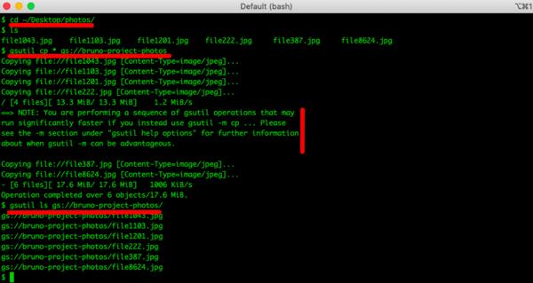 Copying multiple files using gsutil