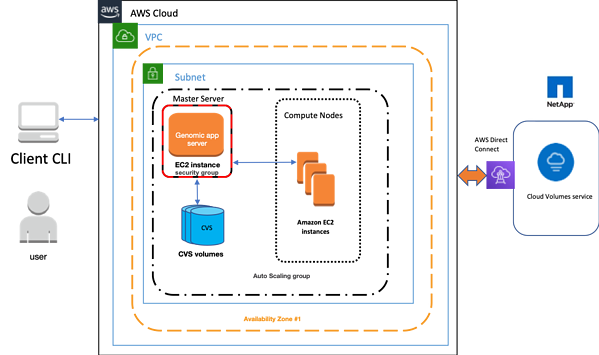 Architecture for Configuring HPC on AWS with Cloud Volumes Service