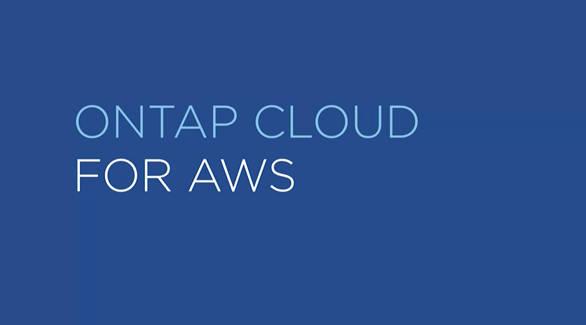 ONTAP Cloud on AWS - How it Works