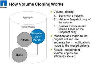Volume cloning - ONTAP cloud