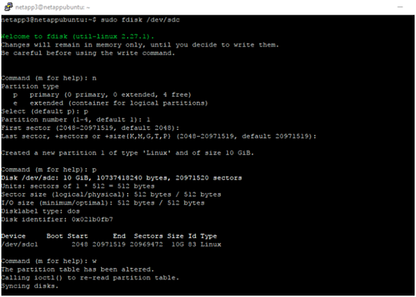 Format and mount the SCSI disk