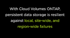 Cloud Volumes ONTAP data storage is resilient