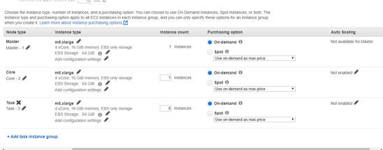 Choose the instance type, number of instances, and a purchasing option.