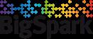 logo-bigspark