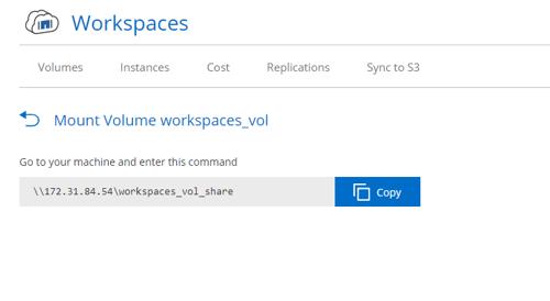 mount volume workspaces